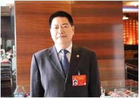苏 华:关于促进民办教育加快发展的建议